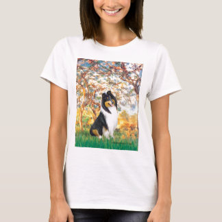 Camiseta Collie (Tri3) - primavera