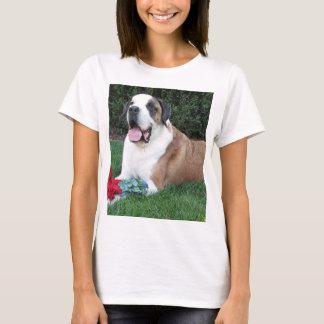 Camiseta colocação de St Bernard