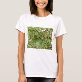 Camiseta Cones imaturos do homem ou do pólen do pinheiro