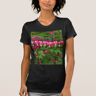 Camiseta Corações de sangramento natureza, foto