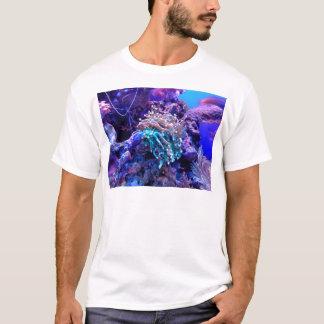 Camiseta coral-1053837