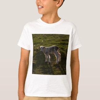 Camiseta Cordeiro recém-nascido