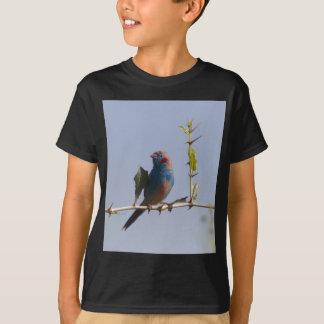Camiseta Cordonbleu cheeked vermelho (bengalus de