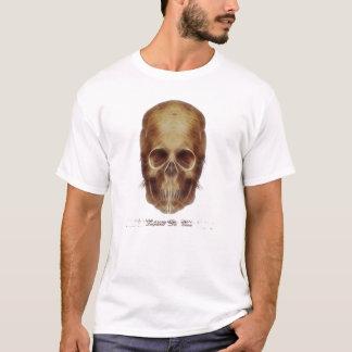 Camiseta Crânio Frac de Leonardo da Vinci