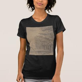 Camiseta Criação da paisagem do Jesus Cristo