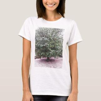Camiseta Cultivar antigo da flor do japonica da camélia