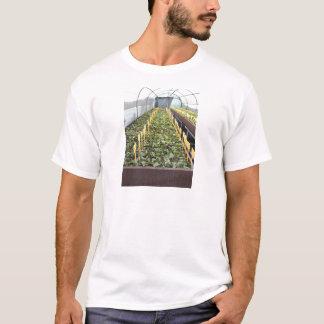 Camiseta Cultivo da estufa da flor do japonica da camélia