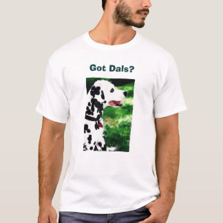 Camiseta Dals obtido?