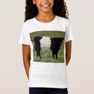 Camiseta Dartmoor cercou a vista da vitela de Galloway