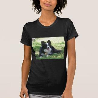 Camiseta de border collie