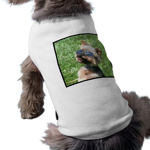 Camiseta de cão legal do yorkshire terrier camisas para cães