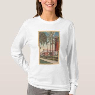 Camiseta Deland, Florida - vista da universidade de Stetson