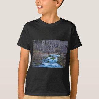 Camiseta Derretimento do primavera fora do fluxo para baixo