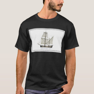 Camiseta descoberta 1607