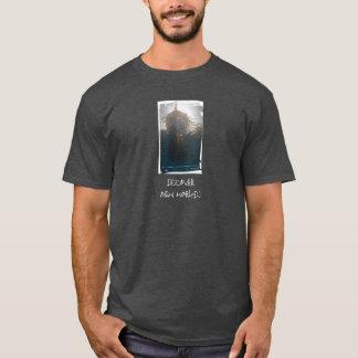 Camiseta Descubra mundos novos