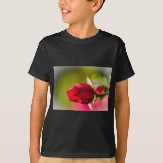 Camiseta Design ascendente próximo da rosa vermelha