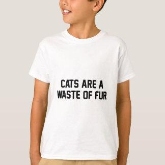 Camiseta Desperdício dos gatos da pele