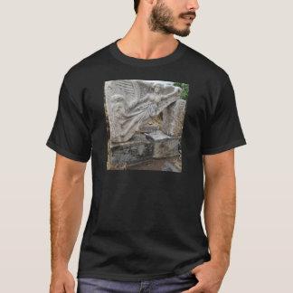 Camiseta Deusa grega Nike em Ephesus, Turquia