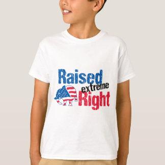 Camiseta Direito extremo levantado - republicano