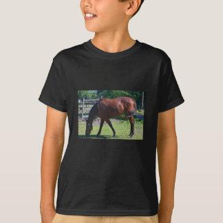 Camiseta do cavalo da criança 100_0830-1