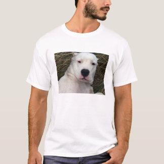 Camiseta dogo argentino.png