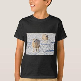 Camiseta Dois carneiros que estão na neve durante o inverno