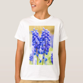 Camiseta Dois jacintos de uva azuis no primavera