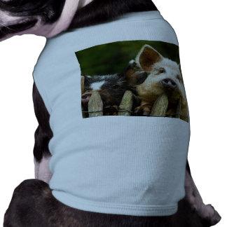 Camiseta Dois porcos - fazenda de porco - fazendas da carne