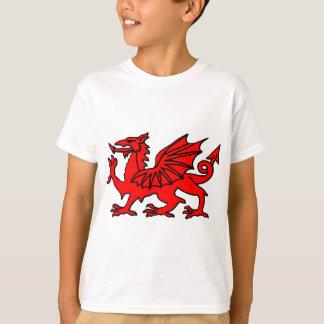 Camiseta Dragão de Galês