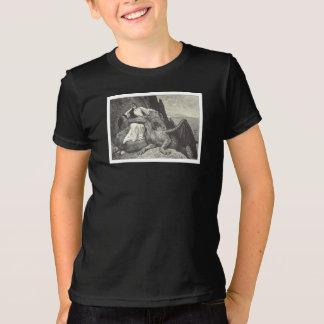 Camiseta Dragão e donzela do animal de estimação