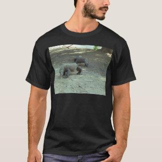 Camiseta Dragões de Komodo