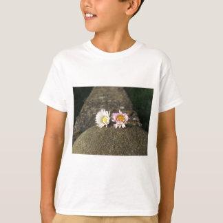 Camiseta Duas margaridas brancas que encontram-se na pedra