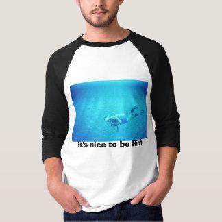 Camiseta é agradável ser rico