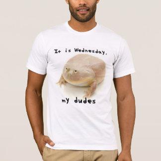 Camiseta É quarta-feira meus gajos