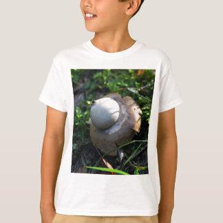Camiseta Earthstar franjado (fimbriatum do Geastrum)