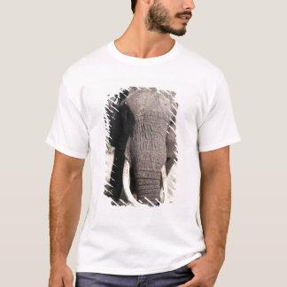 Camiseta Elefante (africana), acampamento 3 do Loxodonta de