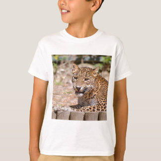 Camiseta Encontro do leopardo