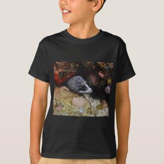 Camiseta Enguia acolhedor
