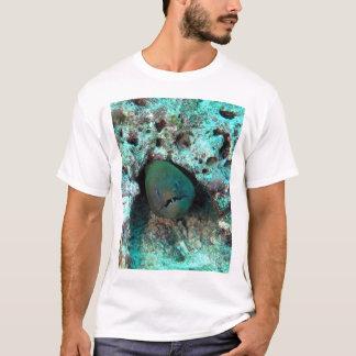 Camiseta Enguia de Moray em Fiji