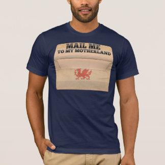 Camiseta Envie-me ao Patagonia
