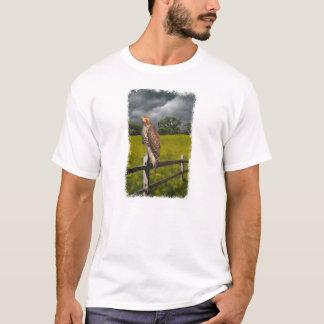 Camiseta Esperando a tempestade - falcão vermelho da cauda