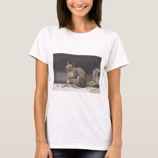 Camiseta Esquilo macio