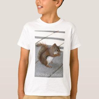 Camiseta Esquilo vermelho