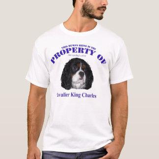 Camiseta Esta propriedade humana de Cav tricolor