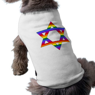 Camiseta Estrela de David customizável do arco-íris do orgu