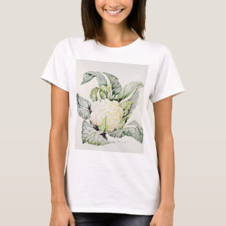 Camiseta Estudo 1993 da couve-flor