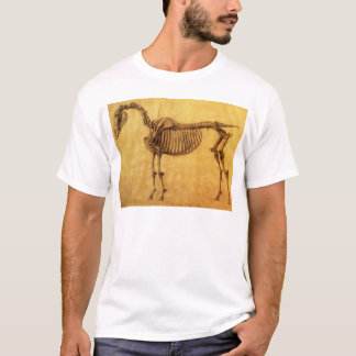 Camiseta Estudo terminado para a primeira mesa esqueletal