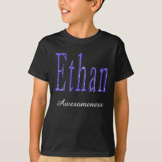 Camiseta Ethan, nome de Awesomeness, logotipo, t-shirt