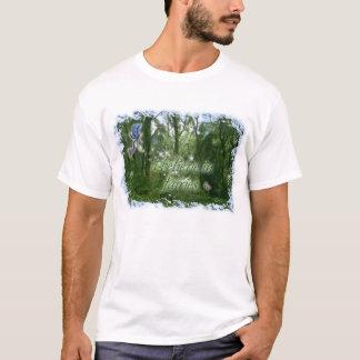 Camiseta Eu acredito nos países das fadas
