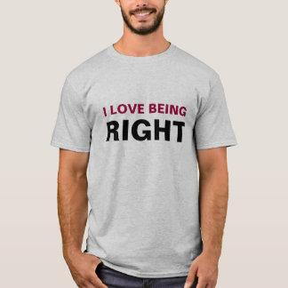 Camiseta EU AMO SER DIREITO - personalizado